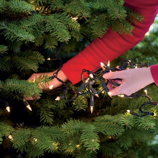 Tips on how to put lights on a Christmas tree
