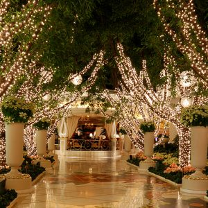 Christmas Light Installation for Restaurants